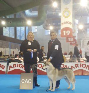 Monografica Especial Perros Nórdicos CEPN 2018